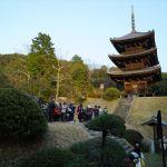 如意寺 三重塔