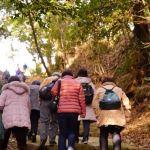 轉法輪寺への原生林