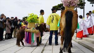 馬供養(馬の息災祈願と厄払い)