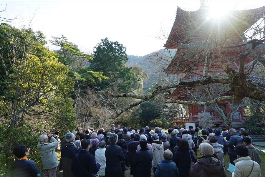 太山寺三重塔(前回ツアーの様子)