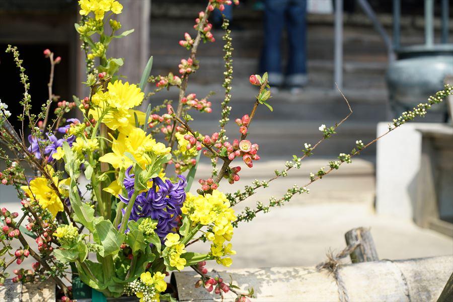 石峯寺 お花